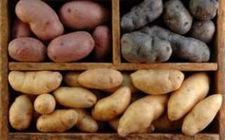 Как хранить картошку на балконе зимой: ящики для хранения овощей, как сделать, видео