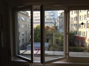 виды французского окна