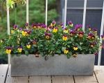 Балконные ящики для цветов-7-3