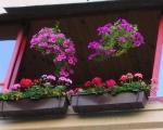 Балконные ящики для цветов-7-4