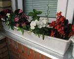 Балконные ящики для цветов-7-7